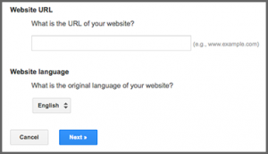 How to add Google Translate in your website2